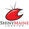Shiny Maine Lobster